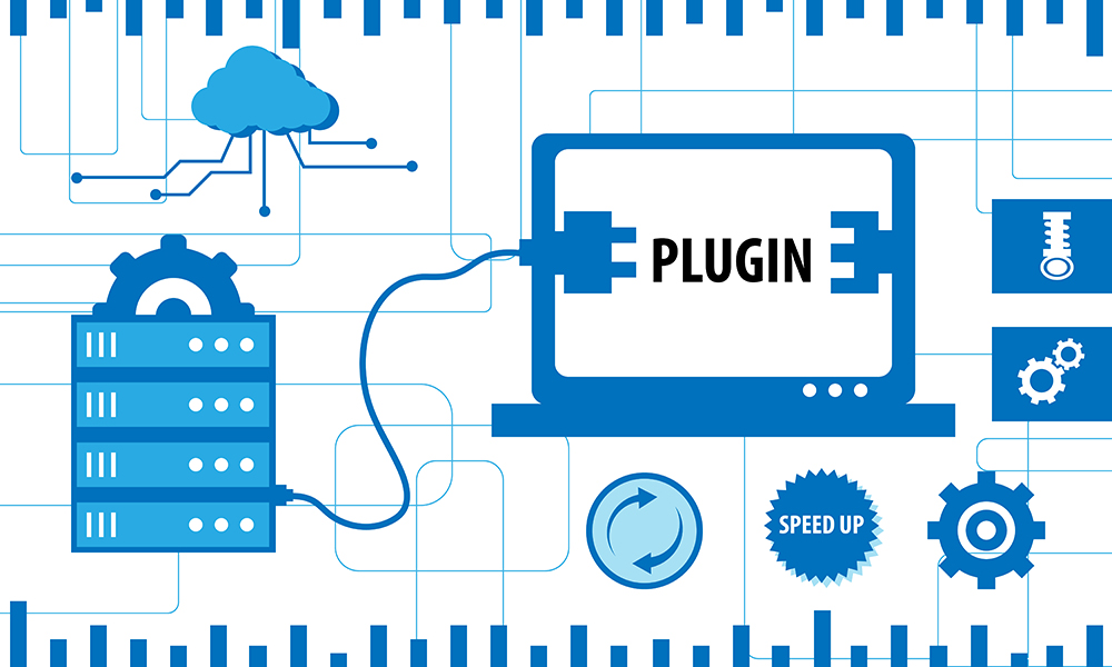 What Is Plug In